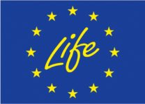 LIFE+ Logo Official